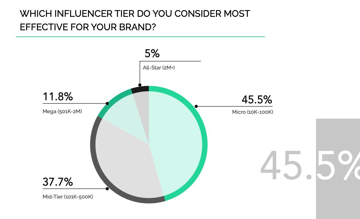 Micro-Influencer & Macro-Influencer Impact